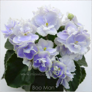 boo_man_7