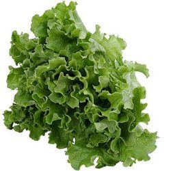 09_lettuce