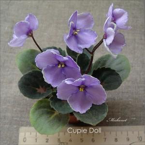 Cupie Doll